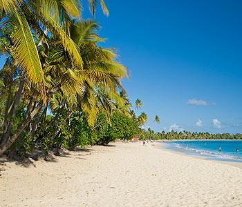 Les Salines beach in Sainte-Anne Martinique