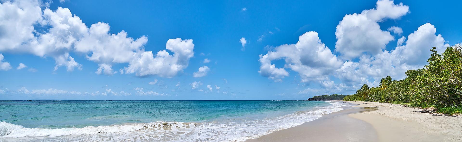 Sainte-Anne beach in Martinique