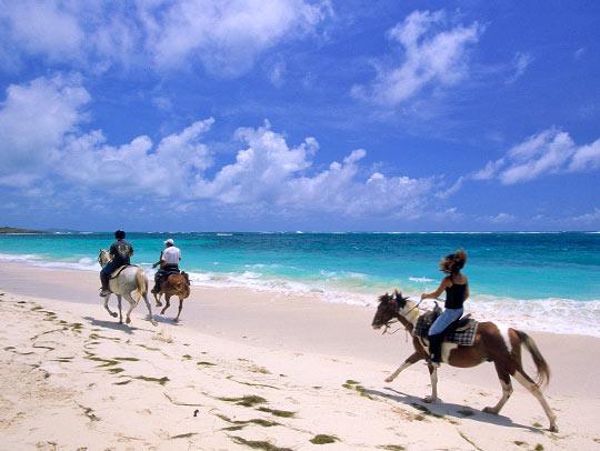 Horseback riding at Anse Grosse Roche Martiinique